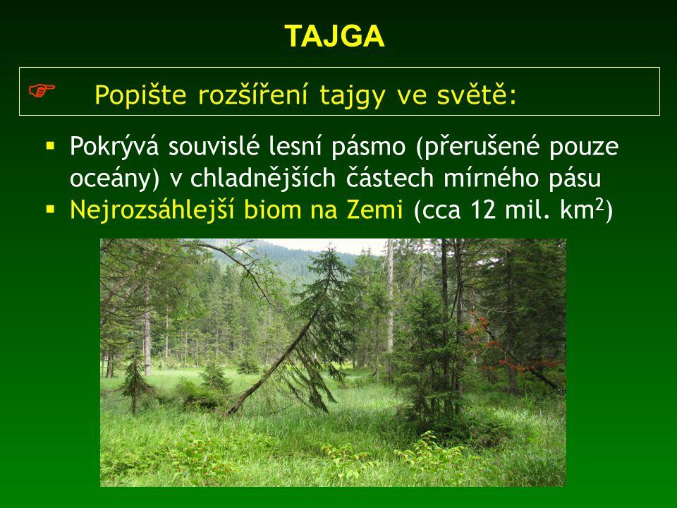 TAJGA  Pokrývá souvislé lesní pásmo (přerušené pouze oceány) v chladnějších částech mírného pásu  Nejrozsáhlejší biom na Zemi (cca 12 mil. km 2 ) 