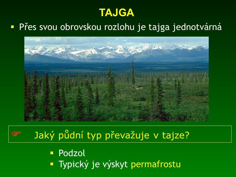  Přes svou obrovskou rozlohu je tajga jednotvárná TAJGA  Jaký půdní typ převažuje v tajze?  Podzol  Typický je výskyt permafrostu
