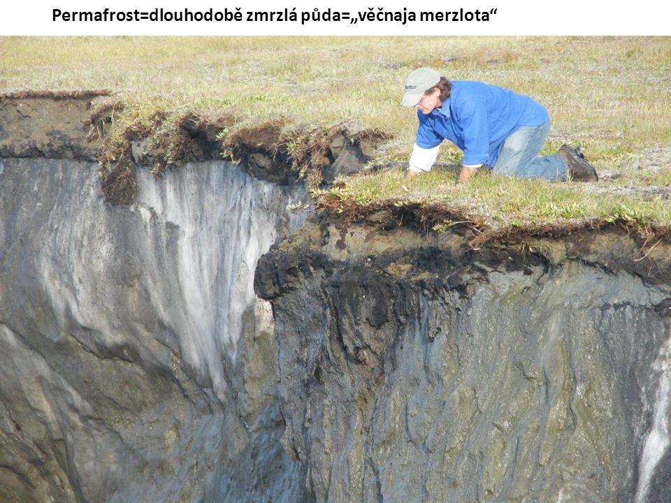 """Permafrost=dlouhodobě zmrzlá půda=""""věčnaja merzlota"""""""