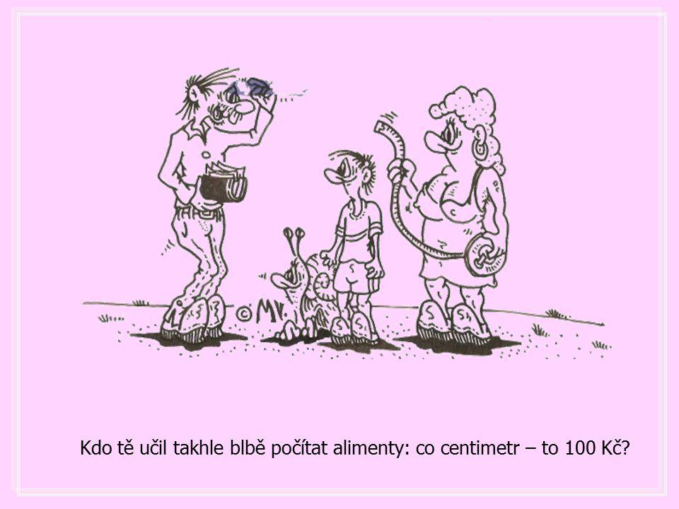 Kdo tě učil takhle blbě počítat alimenty: co centimetr – to 100 Kč?
