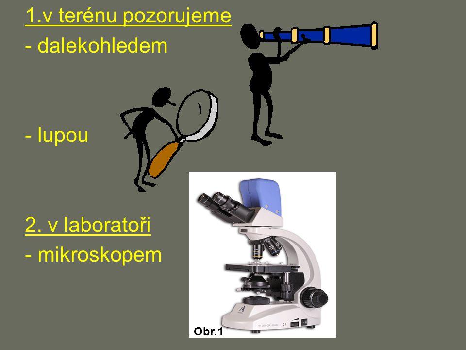 1.v terénu pozorujeme - dalekohledem - lupou 2. v laboratoři - mikroskopem Obr.1