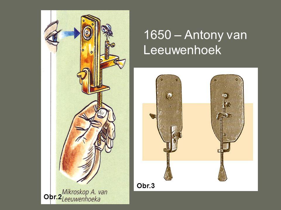 1650 – Antony van Leeuwenhoek Obr.3 Obr.2