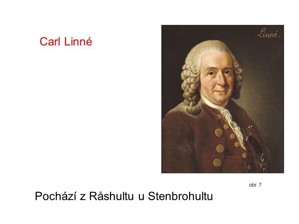 Carl Linné Pochází z Råshultu u Stenbrohultu obr. 7