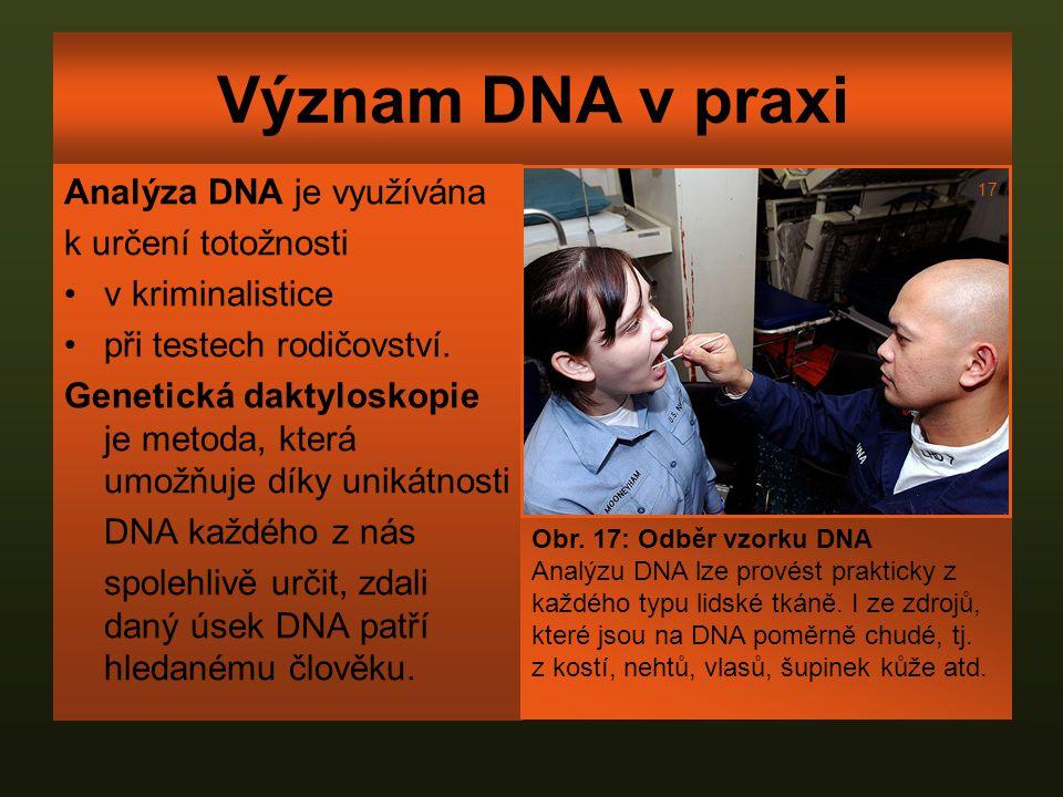 Význam DNA v praxi Analýza DNA je využívána k určení totožnosti v kriminalistice při testech rodičovství. Genetická daktyloskopie je metoda, která umo