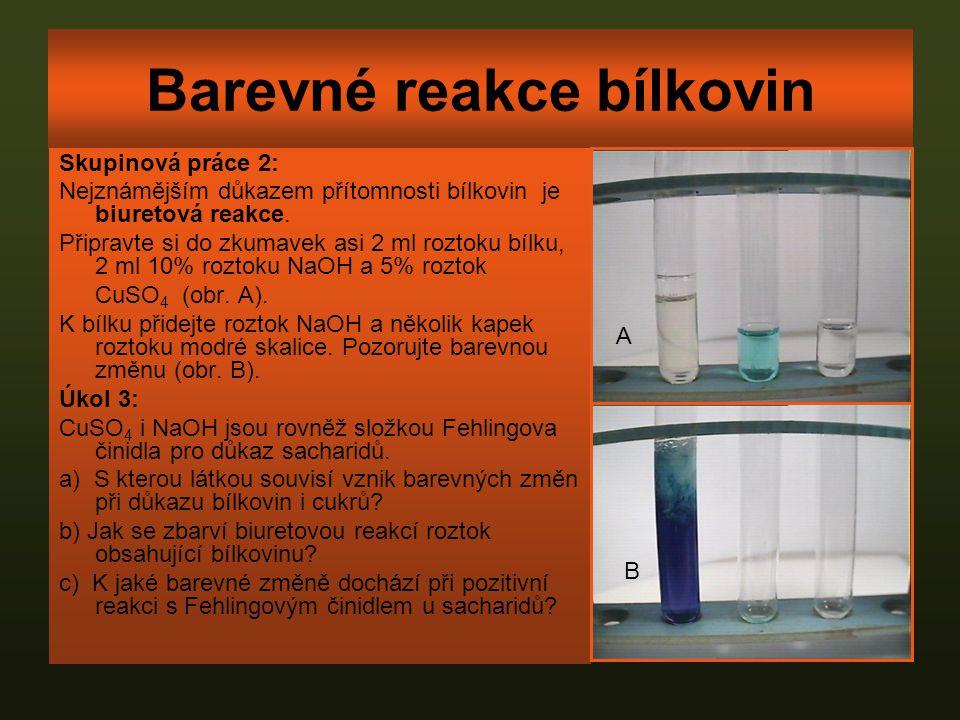 Barevné reakce bílkovin Skupinová práce 2: Nejznámějším důkazem přítomnosti bílkovin je biuretová reakce. Připravte si do zkumavek asi 2 ml roztoku bí