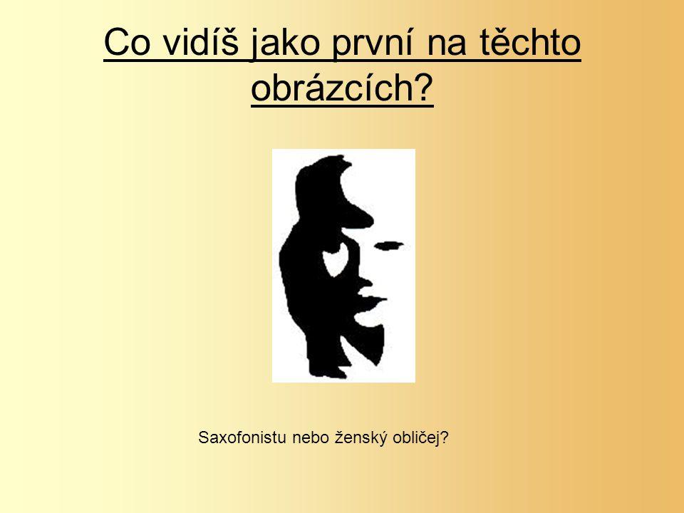 Co vidíš jako první na těchto obrázcích? Saxofonistu nebo ženský obličej?