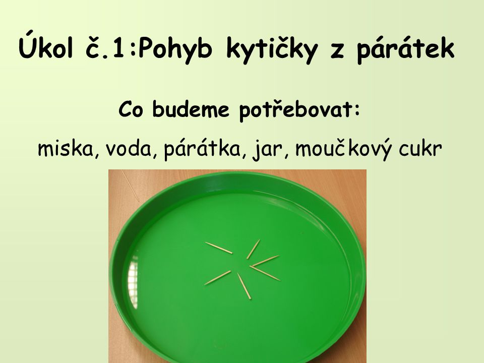 Úkol č.1:Pohyb kytičky z párátek Jak budeme postupovat: a)Do misky nalijeme trochu vody, na hladinu položíme několik párátek(do kytičky).
