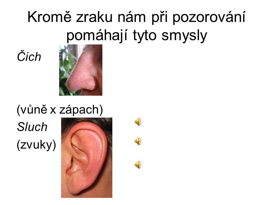Kromě zraku nám při pozorování pomáhají tyto smysly Čich (vůně x zápach) Sluch (zvuky)
