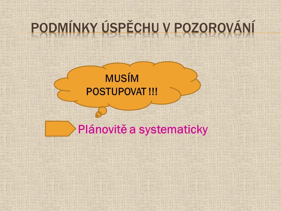 Plánovitě a systematicky MUSÍM POSTUPOVAT !!!