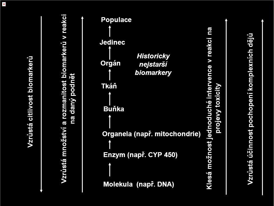 12 http://www.inchem.org/documents/ehc/ehc/ehc155.htm#SectionNumber:1.1 Biomarkery markery v biologických systémech s dostatečně dlouhou dobou života, které umožňují lokalizovat kde v systému došlo ke změně a umožňují tuto změnu kvantifikovat biomarkery na různých úrovních organizace biol.