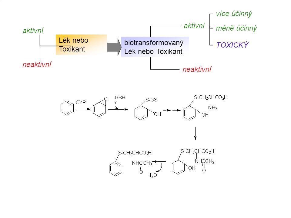 26 Lék nebo Toxikant biotransformovaný Lék nebo Toxikant aktivní neaktivní aktivní neaktivní více účinný TOXICKÝ méně účinný