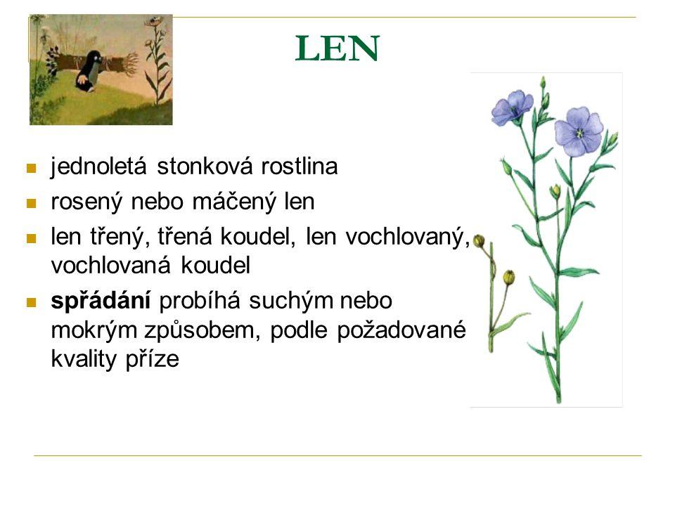 LEN jednoletá stonková rostlina rosený nebo máčený len len třený, třená koudel, len vochlovaný, vochlovaná koudel spřádání probíhá suchým nebo mokrým