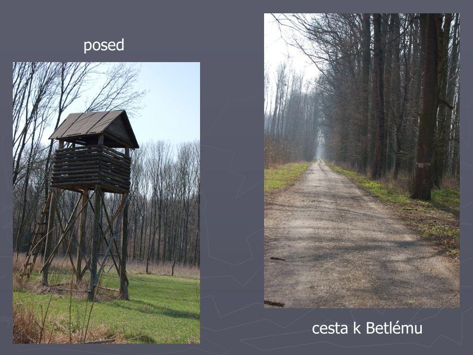 posed cesta k Betlému