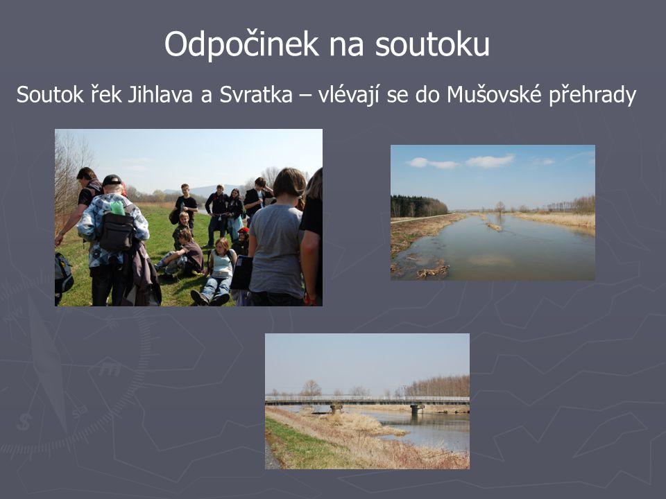 Odpočinek na soutoku Soutok řek Jihlava a Svratka – vlévají se do Mušovské přehrady