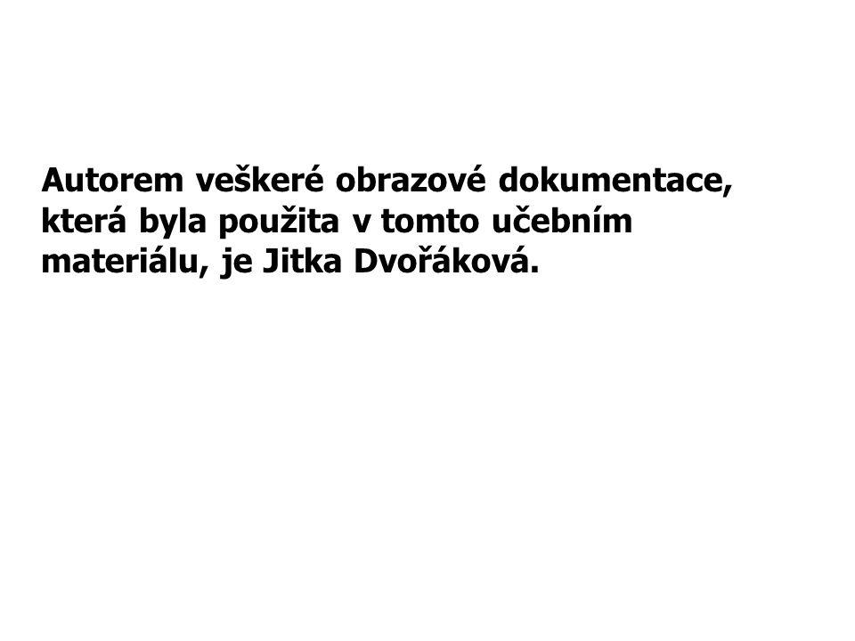 Autorem veškeré obrazové dokumentace, která byla použita v tomto učebním materiálu, je Jitka Dvořáková.