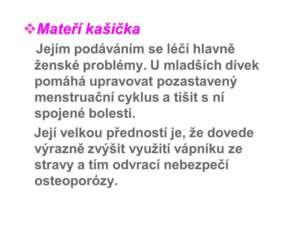  Mateří  Mateří kašička Jejím podáváním se léčí hlavně ženské problémy. U mladších dívek pomáhá upravovat pozastavený menstruační cyklus a tišit s n