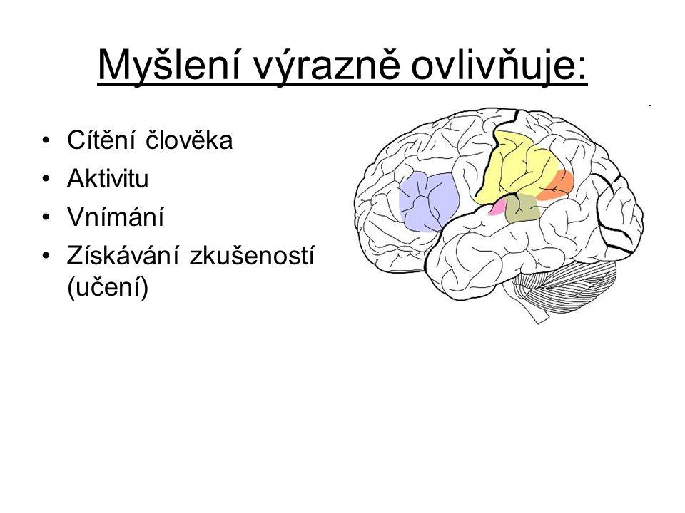 Myšlení výrazně ovlivňuje: Cítění člověka Aktivitu Vnímání Získávání zkušeností (učení)