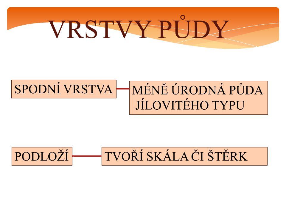 HORNINY HLÍNA, PÍSEK I KAMENY JSOU HORNINY.