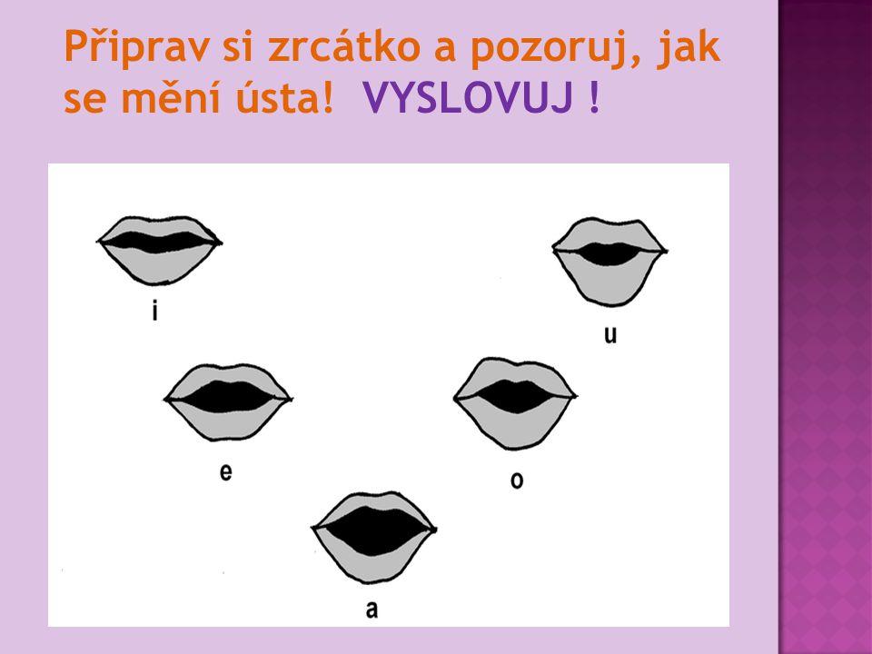 Poznáš samohlásky ?