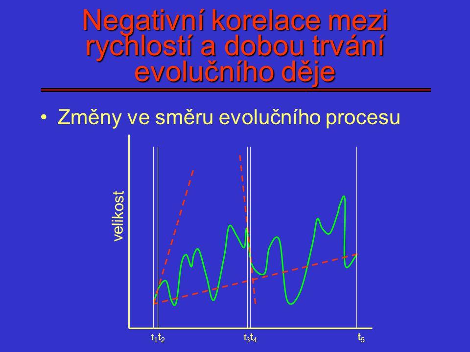Negativní korelace mezi rychlostí a dobou trvání evolučního děje Změny ve směru evolučního procesu velikost t1t1 t2t2 t3t3 t4t4 t5t5