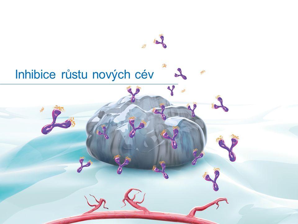Inhibice růstu nových cév