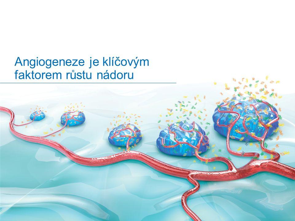 Angiogeneze je klíčovým faktorem růstu nádoru