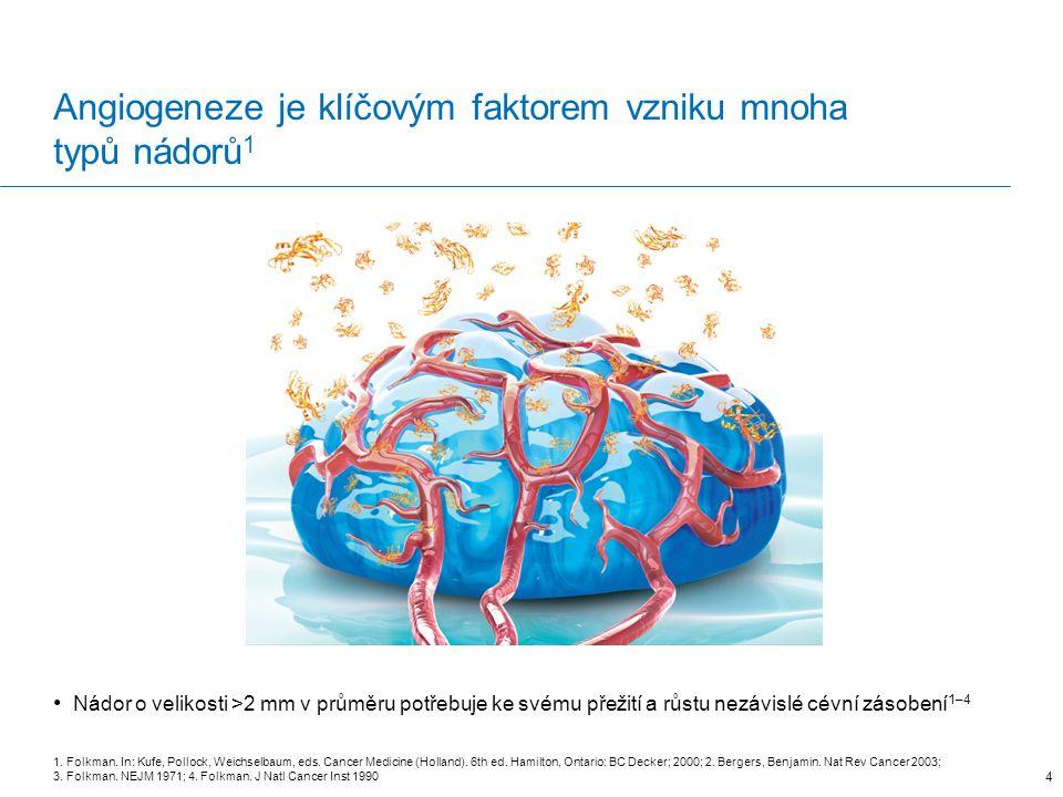 Angiogeneze je klíčovým faktorem vzniku mnoha typů nádorů 1 Nádor o velikosti >2 mm v průměru potřebuje ke svému přežití a růstu nezávislé cévní zásobení 1–4 1.