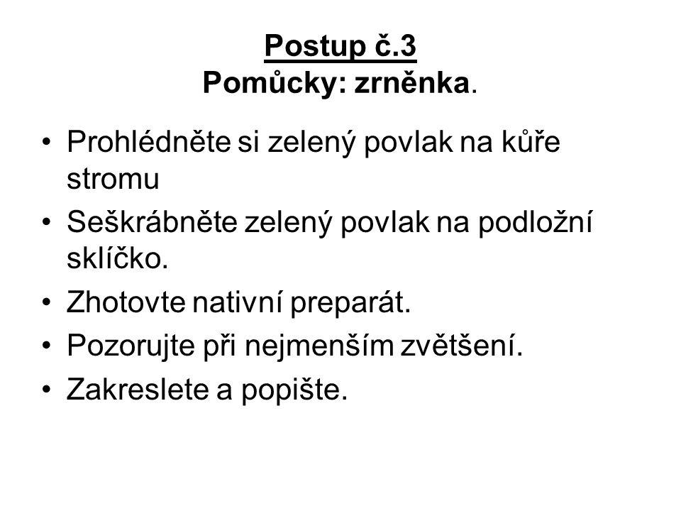 Postup č.3 Pomůcky: zrněnka.