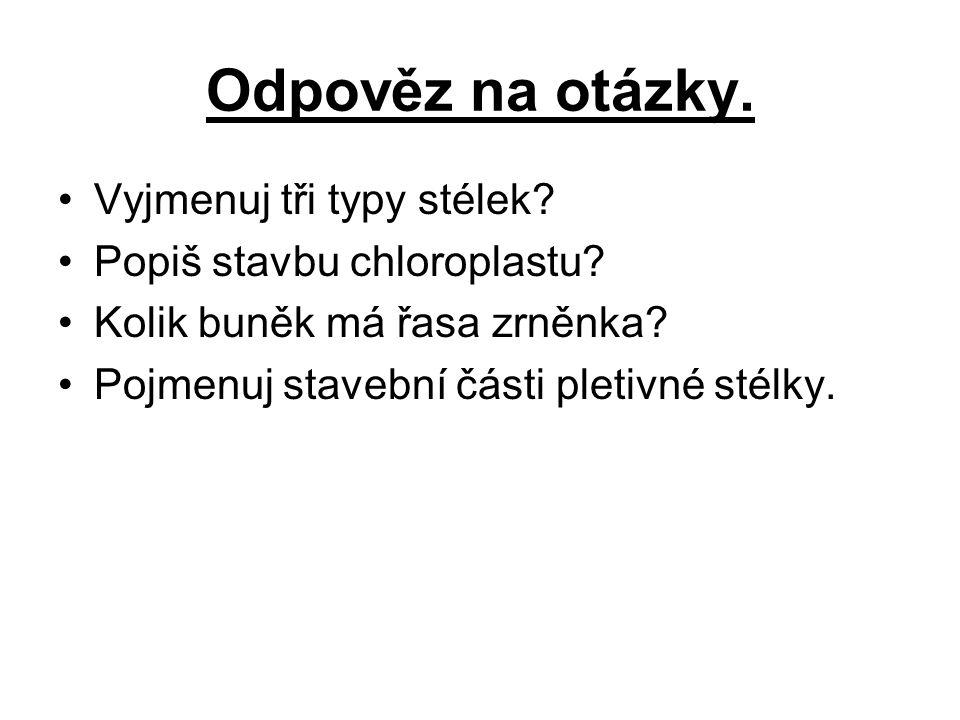 Odpověz na otázky.Vyjmenuj tři typy stélek. Popiš stavbu chloroplastu.