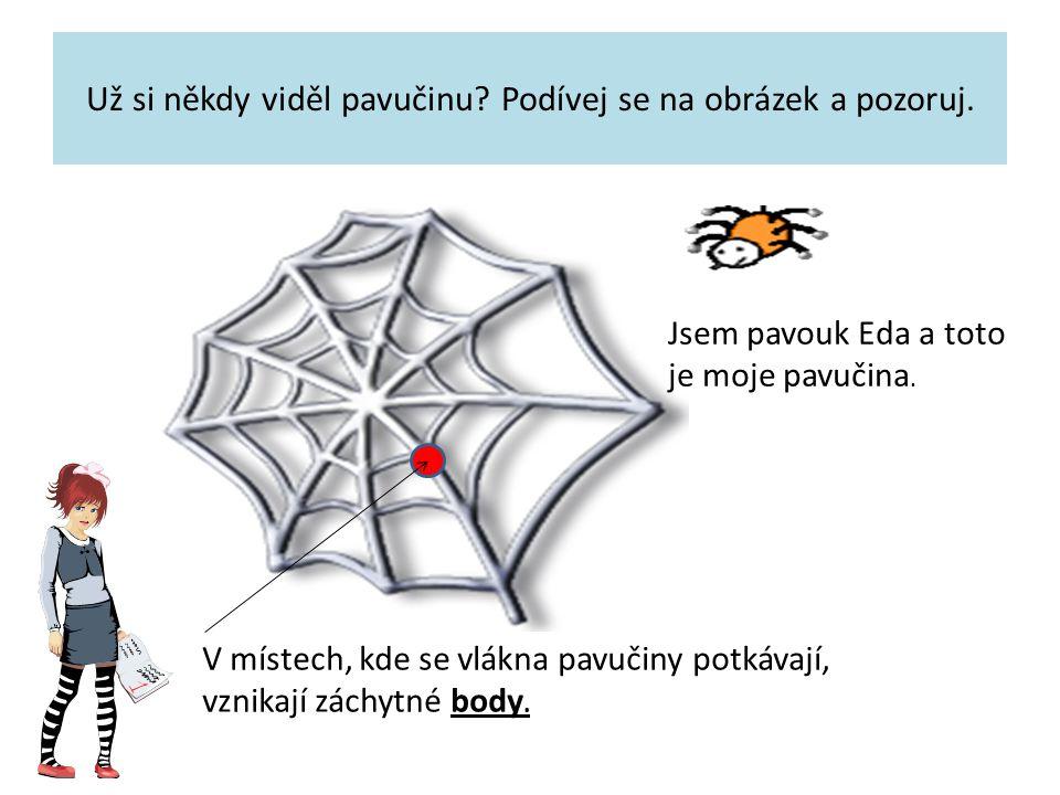 Už si někdy viděl pavučinu? Podívej se na obrázek a pozoruj. Jsem pavouk Eda a toto je moje pavučina. V místech, kde se vlákna pavučiny potkávají, vzn