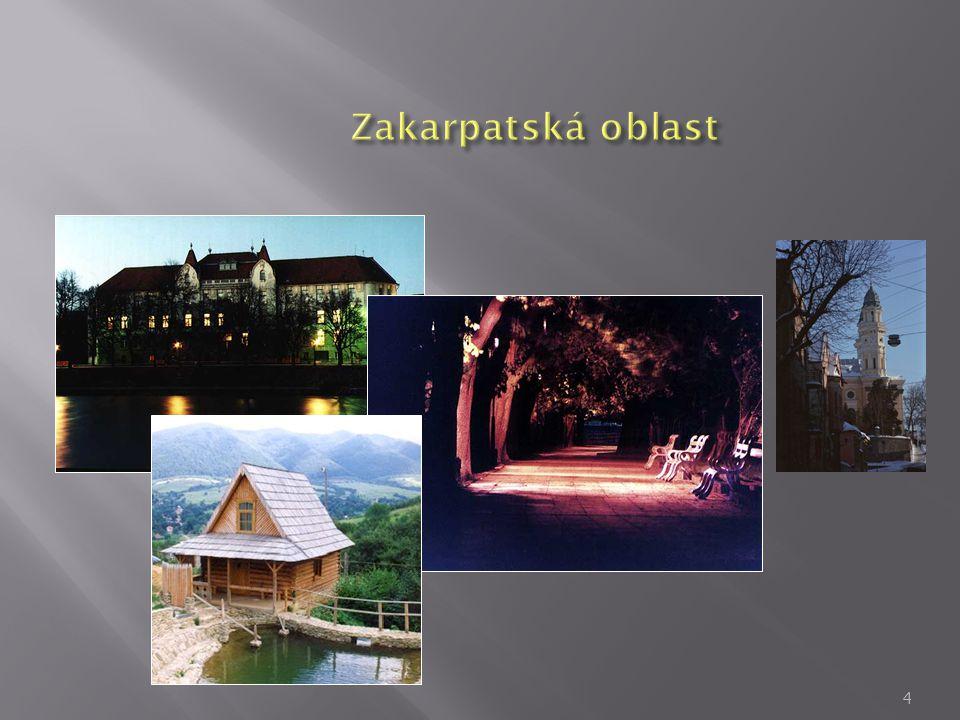 35 Částka obchodování Zakarpatské oblasti s krajinami Vyšehrádské čtyřky. (%).