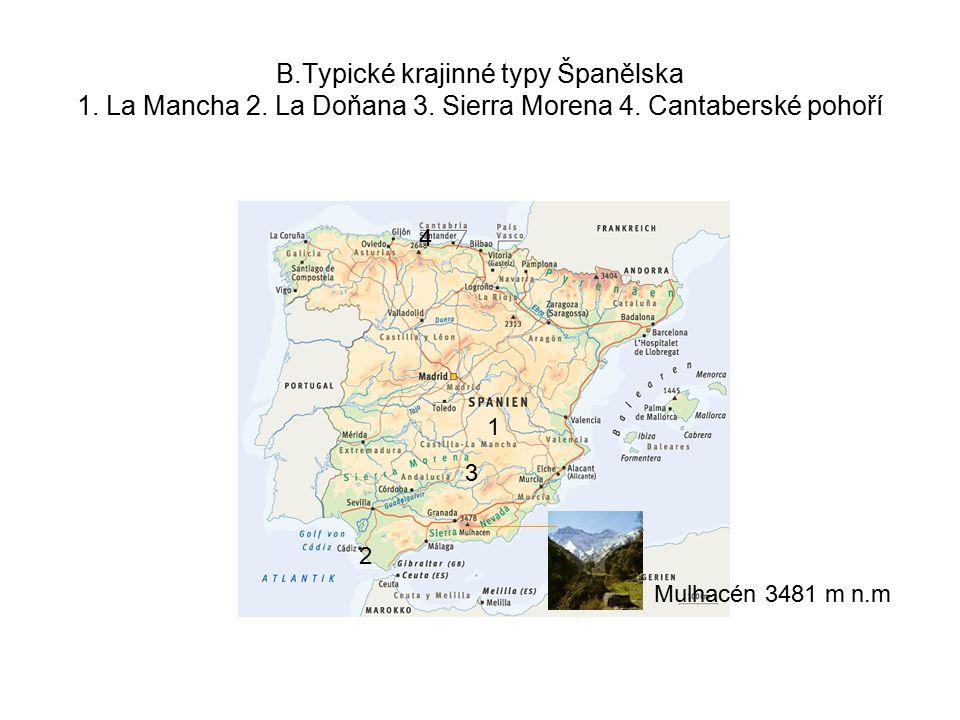 B.Typické krajinné typy Španělska 1.La Mancha 2. La Doňana 3.