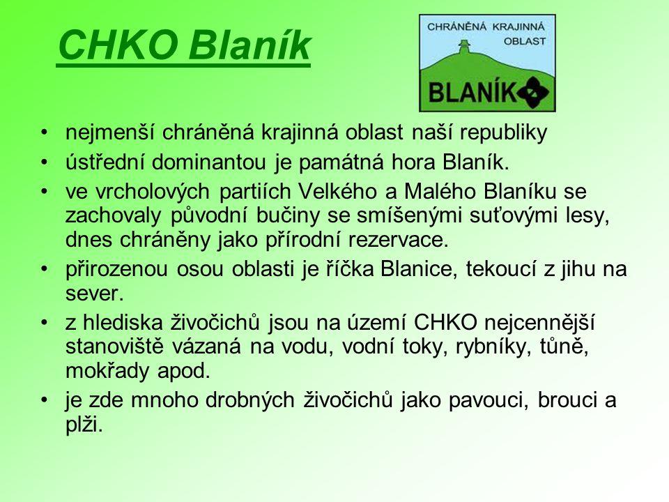 CHKO Blaník nejmenší chráněná krajinná oblast naší republiky ústřední dominantou je památná hora Blaník. ve vrcholových partiích Velkého a Malého Blan