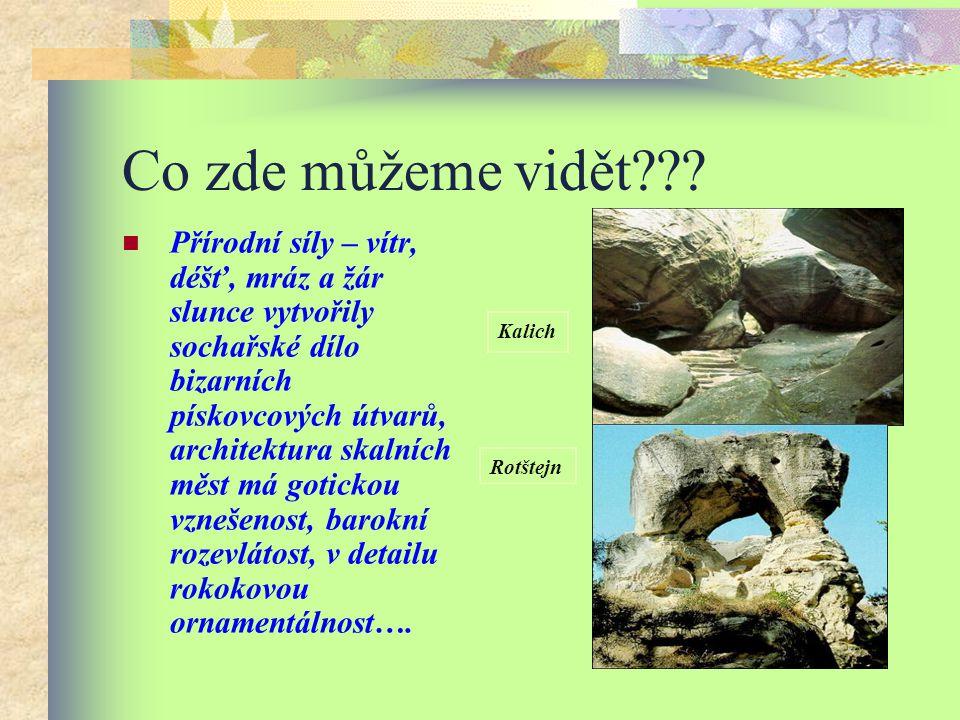 Zajímavost………… Český ráj byl v roce 2005 vyhlášen Geoparkem UNESCO. Stalo se tak právě díky mnoha fenoménům krajiny, kde najdete naleziště drahých kam