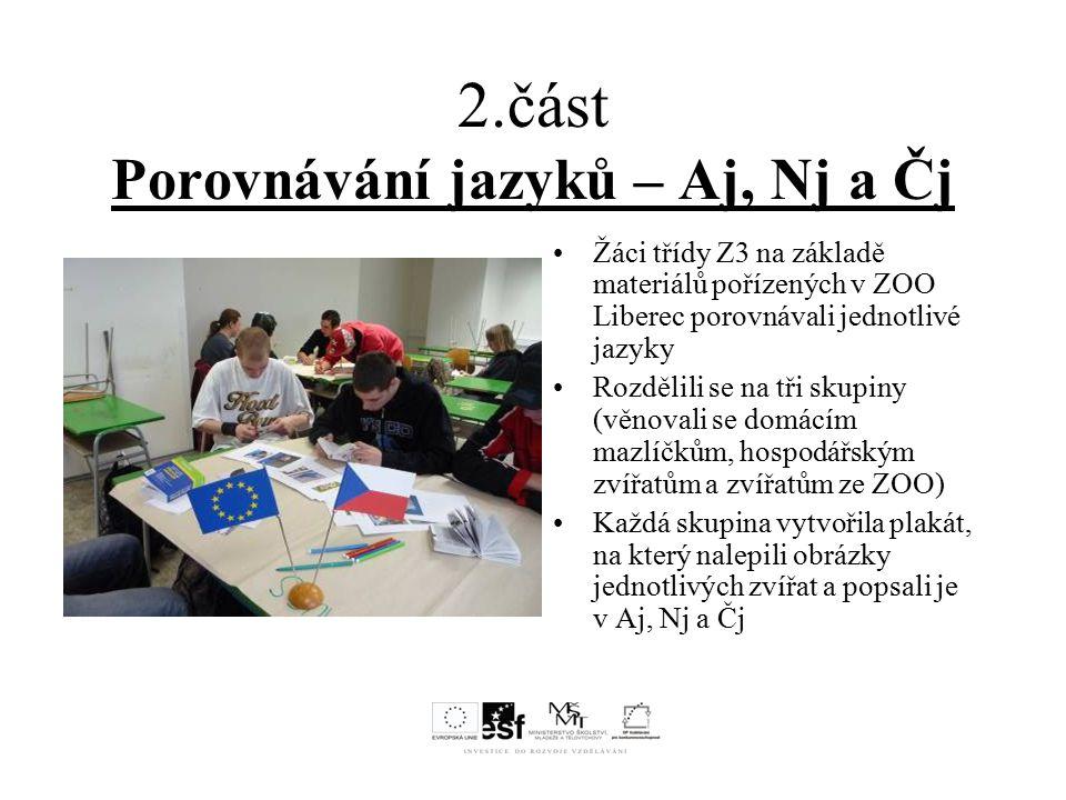 2.část Porovnávání jazyků – Aj, Nj a Čj Žáci třídy Z3 na základě materiálů pořízených v ZOO Liberec porovnávali jednotlivé jazyky Rozdělili se na tři skupiny (věnovali se domácím mazlíčkům, hospodářským zvířatům a zvířatům ze ZOO) Každá skupina vytvořila plakát, na který nalepili obrázky jednotlivých zvířat a popsali je v Aj, Nj a Čj