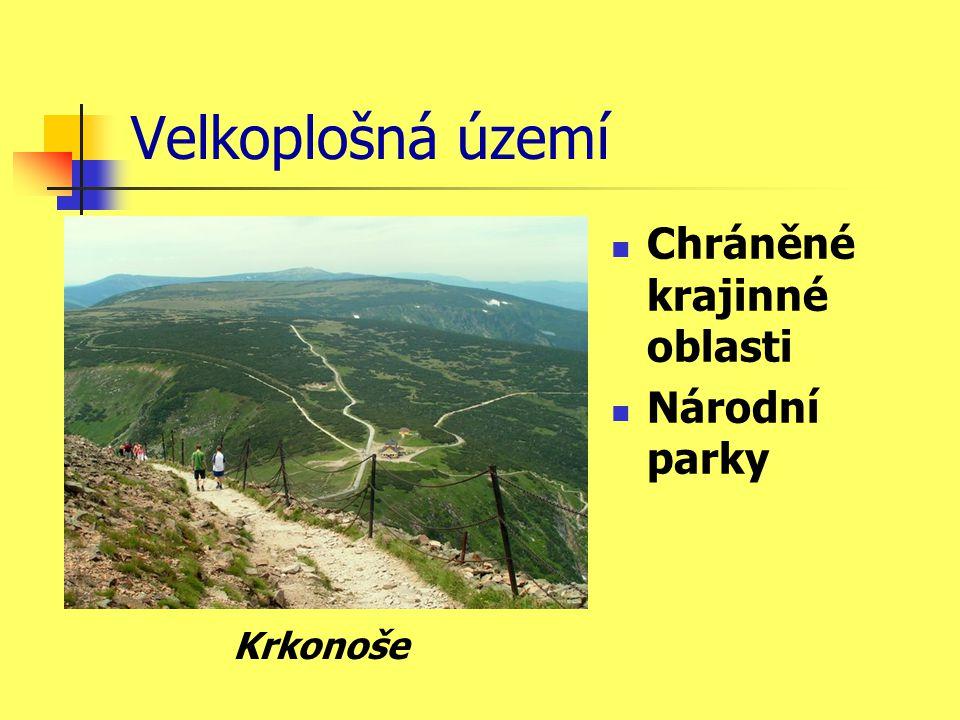 Velkoplošná území Chráněné krajinné oblasti Národní parky Krkonoše