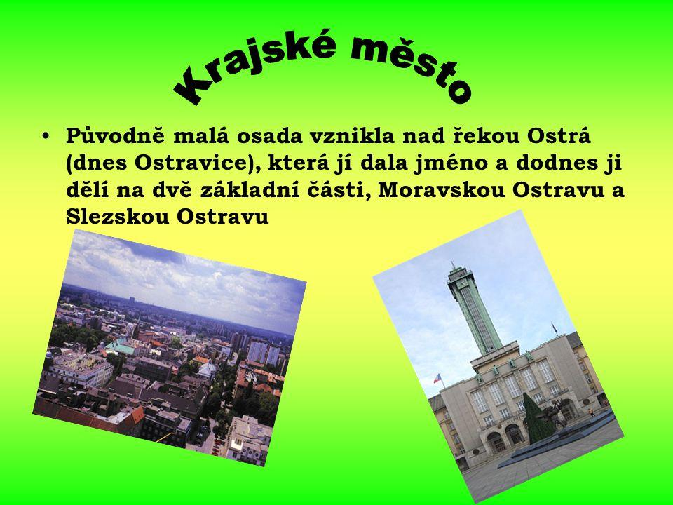Původně malá osada vznikla nad řekou Ostrá (dnes Ostravice), která jí dala jméno a dodnes ji dělí na dvě základní části, Moravskou Ostravu a Slezskou