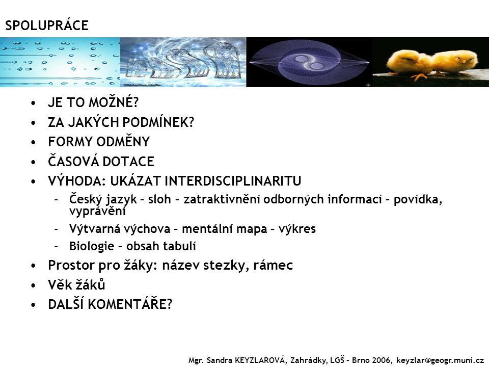 JE TO MOŽNÉ? ZA JAKÝCH PODMÍNEK? FORMY ODMĚNY ČASOVÁ DOTACE VÝHODA: UKÁZAT INTERDISCIPLINARITU –Český jazyk – sloh – zatraktivnění odborných informací