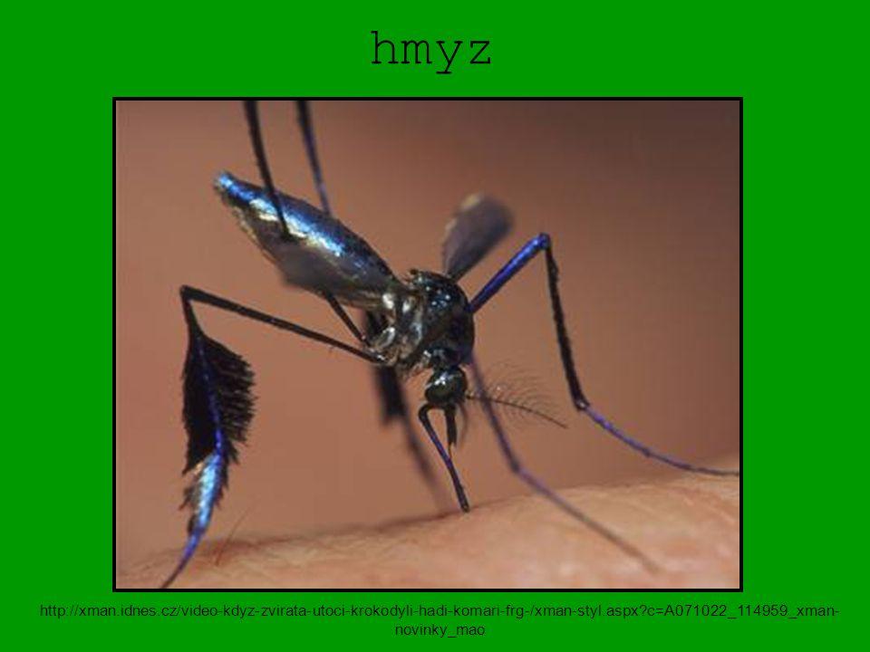 hmyz http://xman.idnes.cz/video-kdyz-zvirata-utoci-krokodyli-hadi-komari-frg-/xman-styl.aspx?c=A071022_114959_xman- novinky_mao