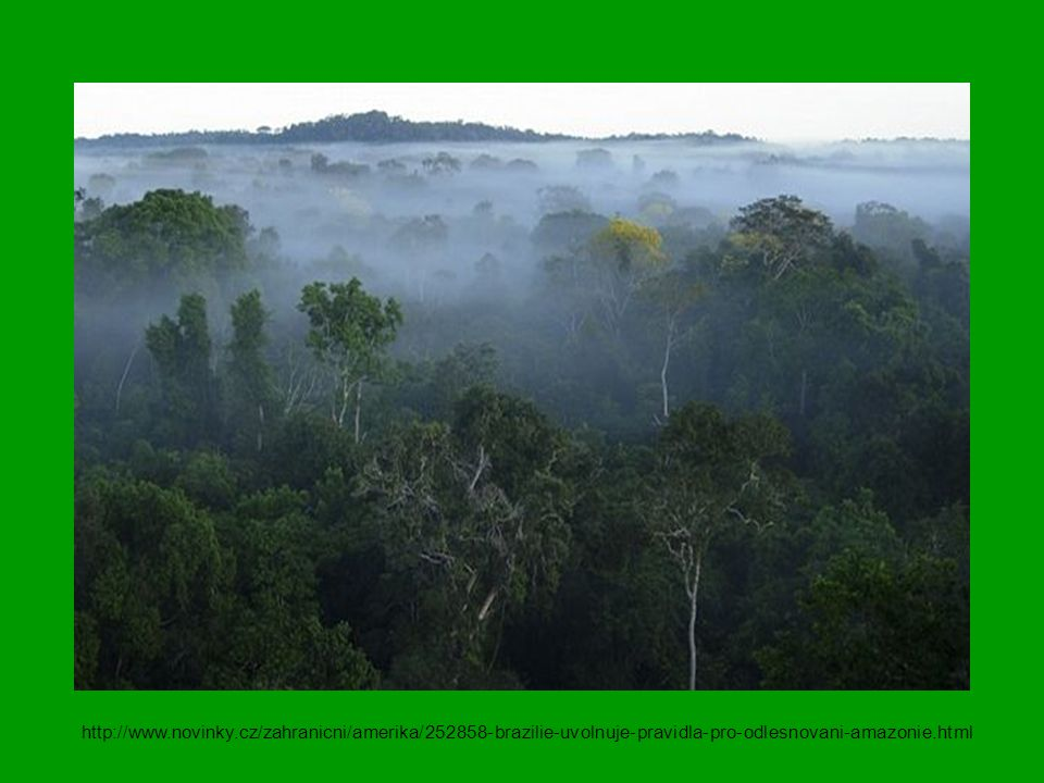 http://www.novinky.cz/zahranicni/amerika/252858-brazilie-uvolnuje-pravidla-pro-odlesnovani-amazonie.html