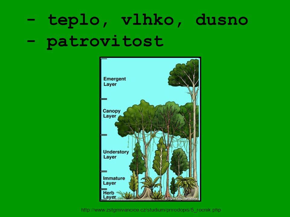 - teplo, vlhko, dusno - patrovitost http://www.zstgmivancice.cz/studium/prirodopis/5_rocnik.php