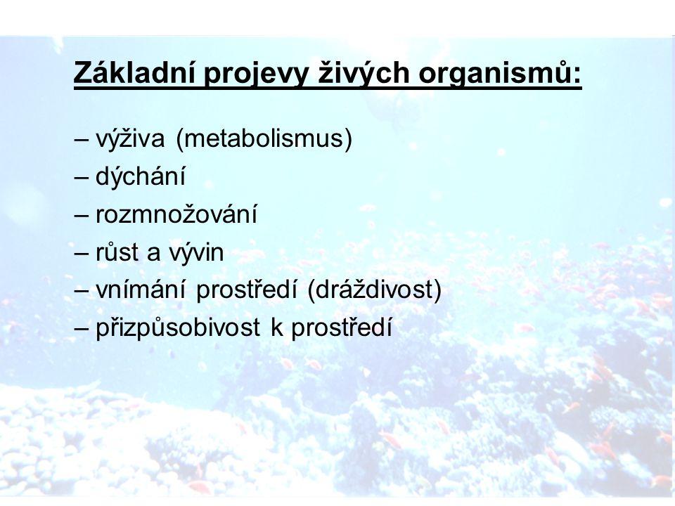 Základní projevy živých organismů: –výživa (metabolismus) –dýchání –rozmnožování –růst a vývin –vnímání prostředí (dráždivost) –přizpůsobivost k prostředí
