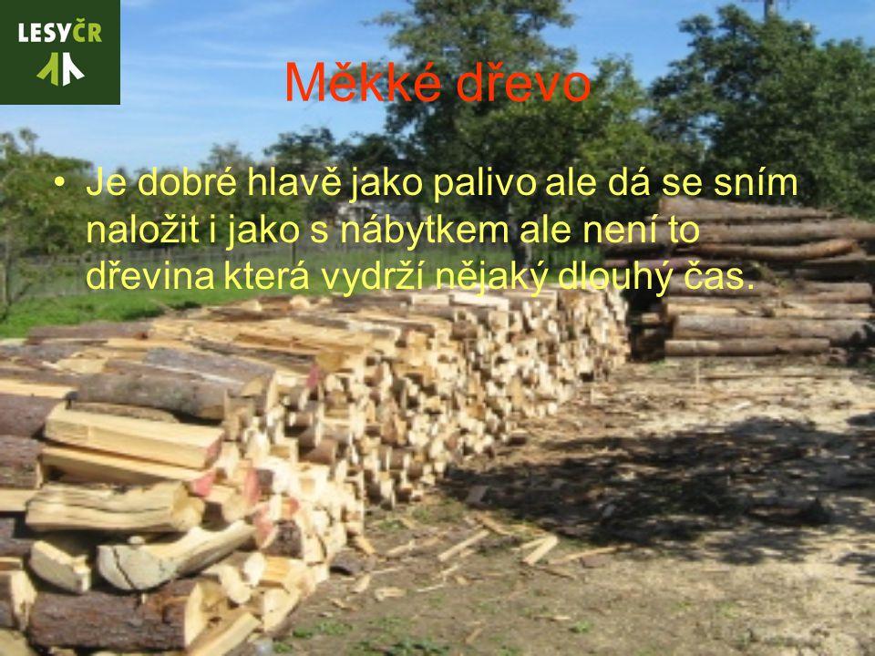 Měkké dřevo Je dobré hlavě jako palivo ale dá se sním naložit i jako s nábytkem ale není to dřevina která vydrží nějaký dlouhý čas.
