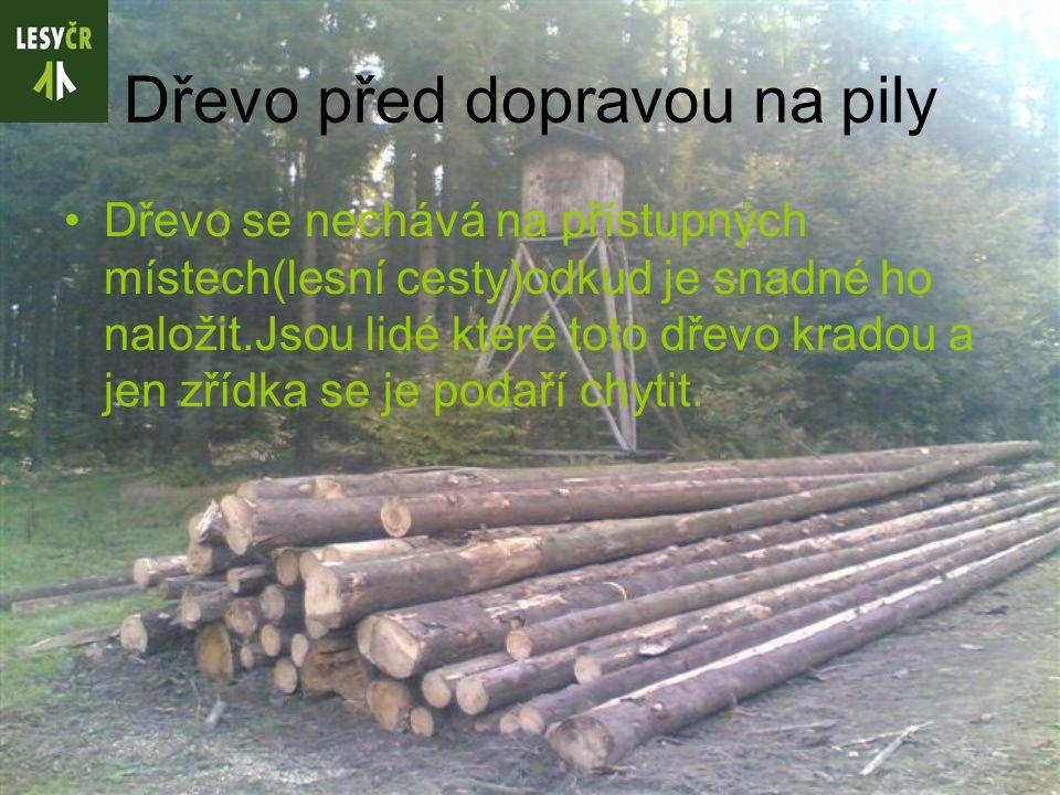 Dřevo před dopravou na pily Dřevo se nechává na přístupných místech(lesní cesty)odkud je snadné ho naložit.Jsou lidé které toto dřevo kradou a jen zřídka se je podaří chytit.