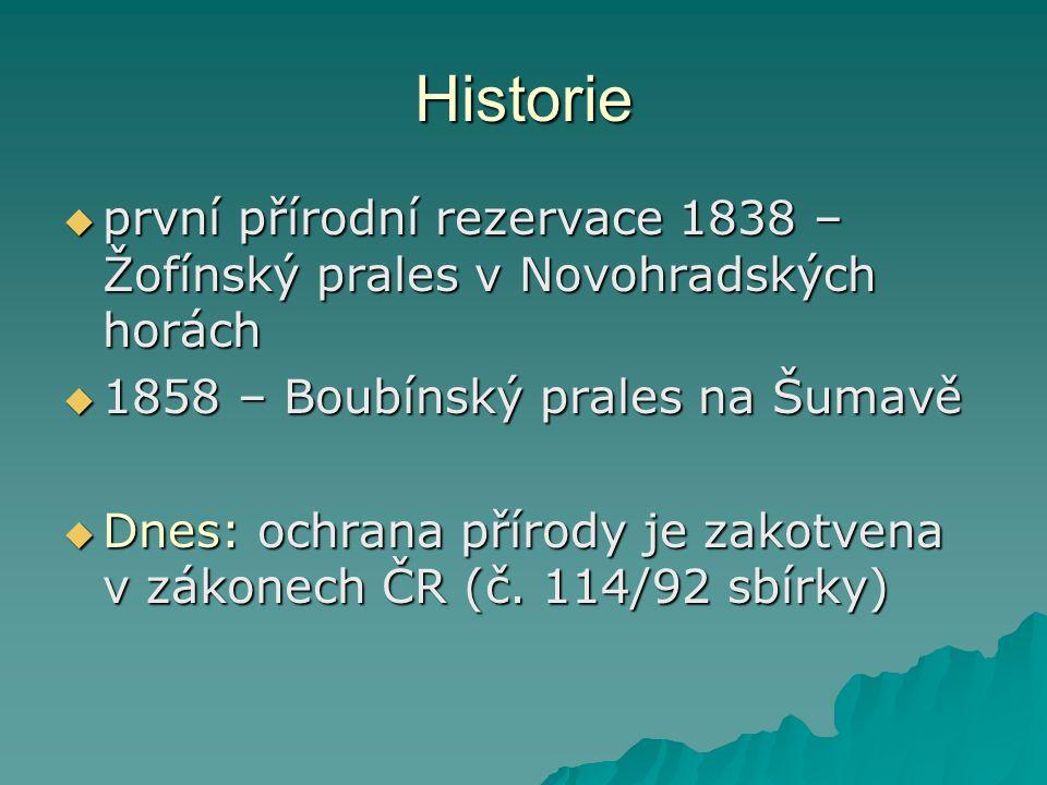 Historie  první přírodní rezervace 1838 – Žofínský prales v Novohradských horách  1858 – Boubínský prales na Šumavě  Dnes: ochrana přírody je zakot