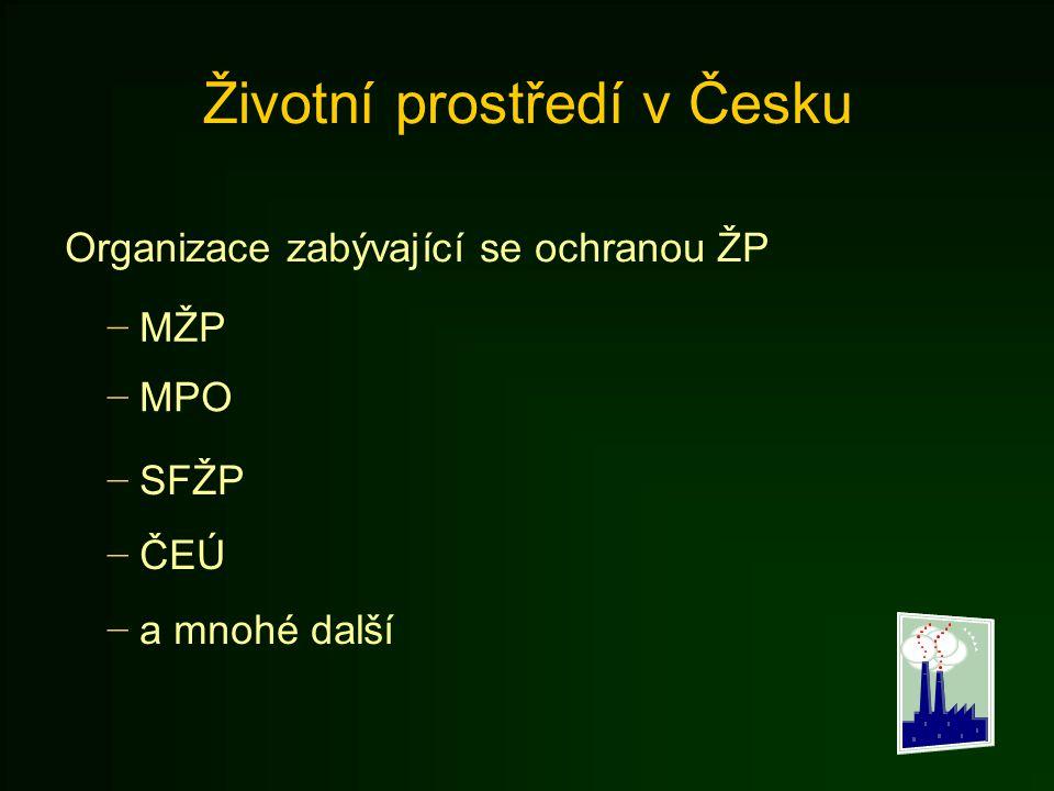 Životní prostředí v Česku Organizace zabývající se ochranou ŽP − MŽP − MPO − SFŽP − ČEÚ − a mnohé další