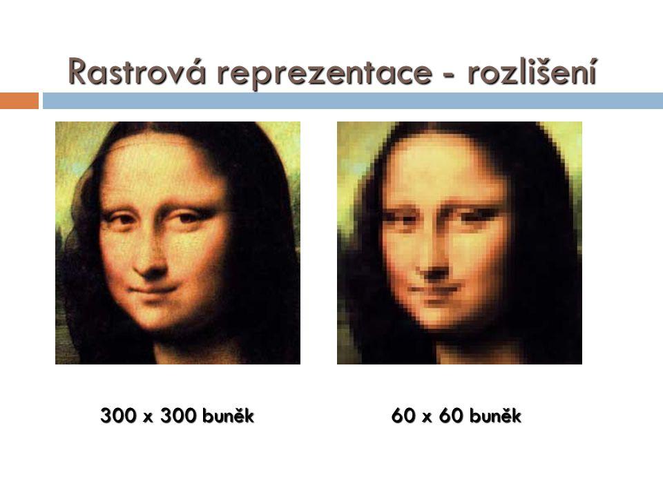 Rastrová reprezentace - rozlišení 300 x 300 buněk 60 x 60 buněk