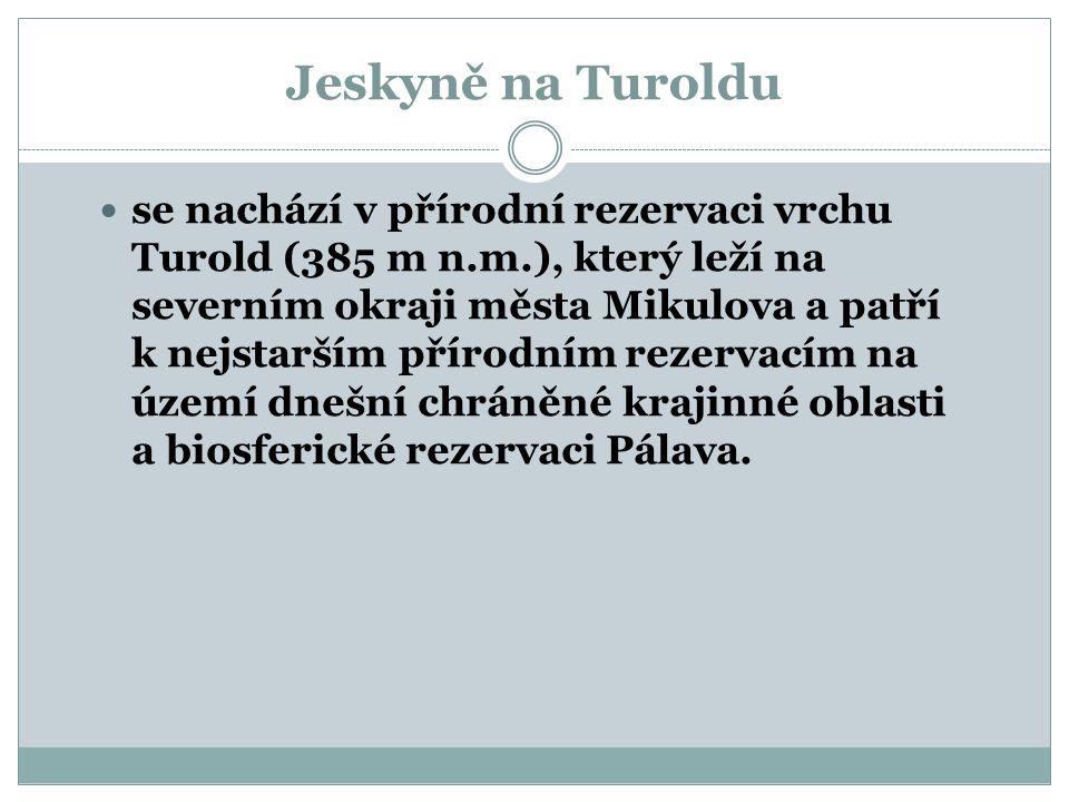 Přírodní rezervace Turold