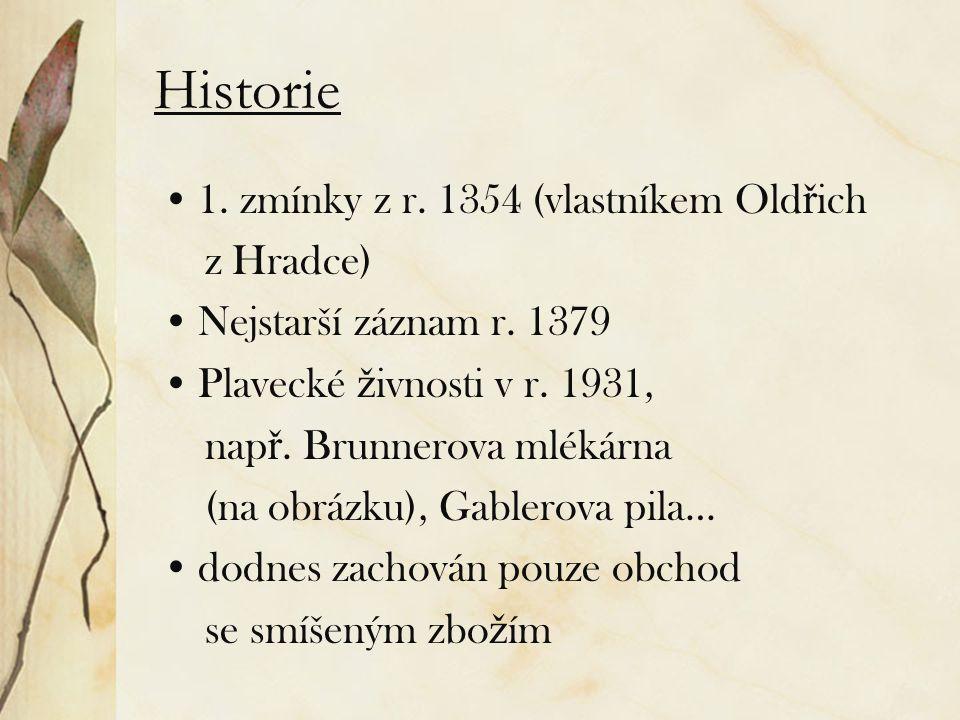 Historie 1. zmínky z r. 1354 (vlastníkem Old ř ich z Hradce) Nejstarší záznam r. 1379 Plavecké ž ivnosti v r. 1931, nap ř. Brunnerova mlékárna (na obr