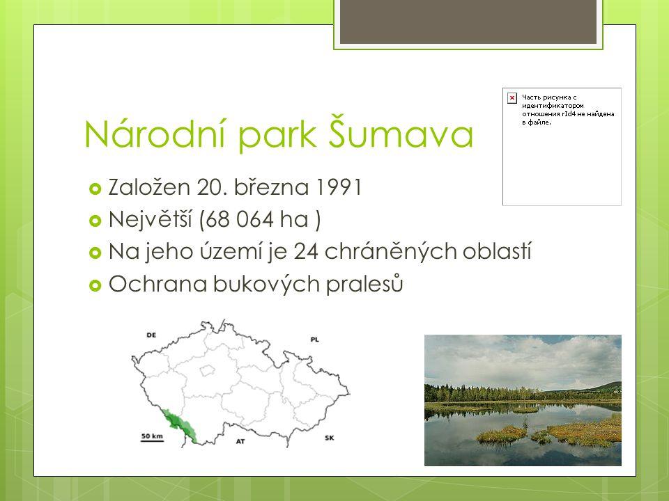 Národní park Šumava  Založen 20. března 1991  Největší (68 064 ha )  Na jeho území je 24 chráněných oblastí  Ochrana bukových pralesů